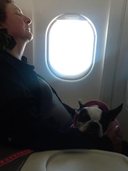 A better traveler than most
